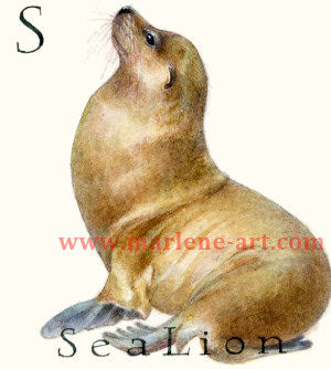 S - the 19th letter in the Animal Alphabet-is for Sea Lion